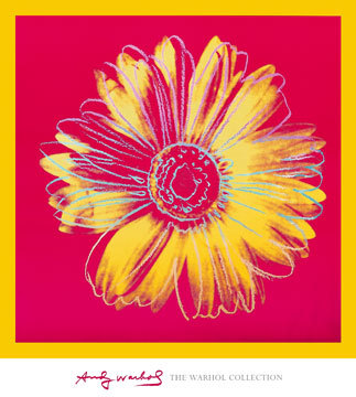 Daisy, c. 1982 (fuchsia and yellow)